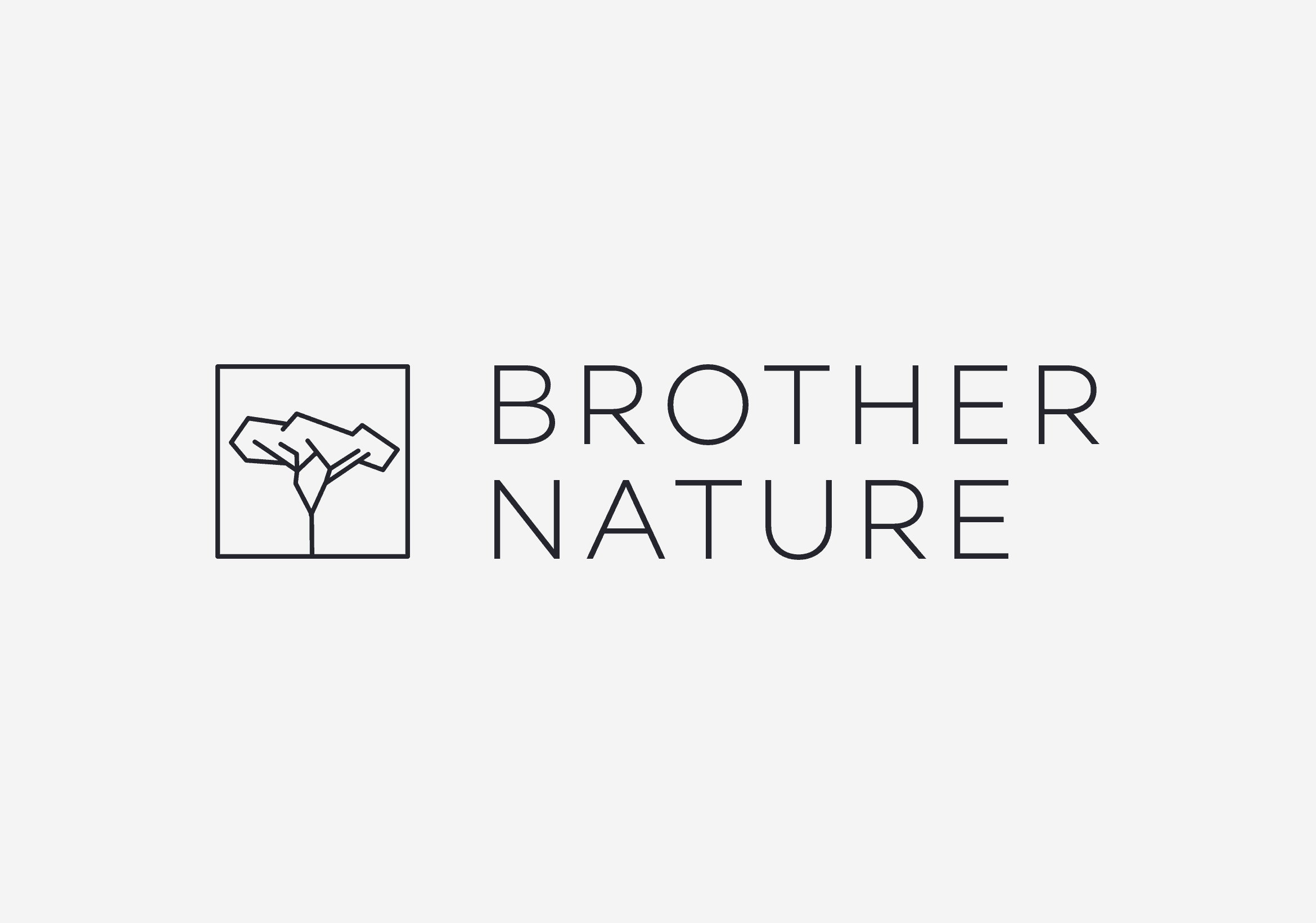 logos-brothernature-logo