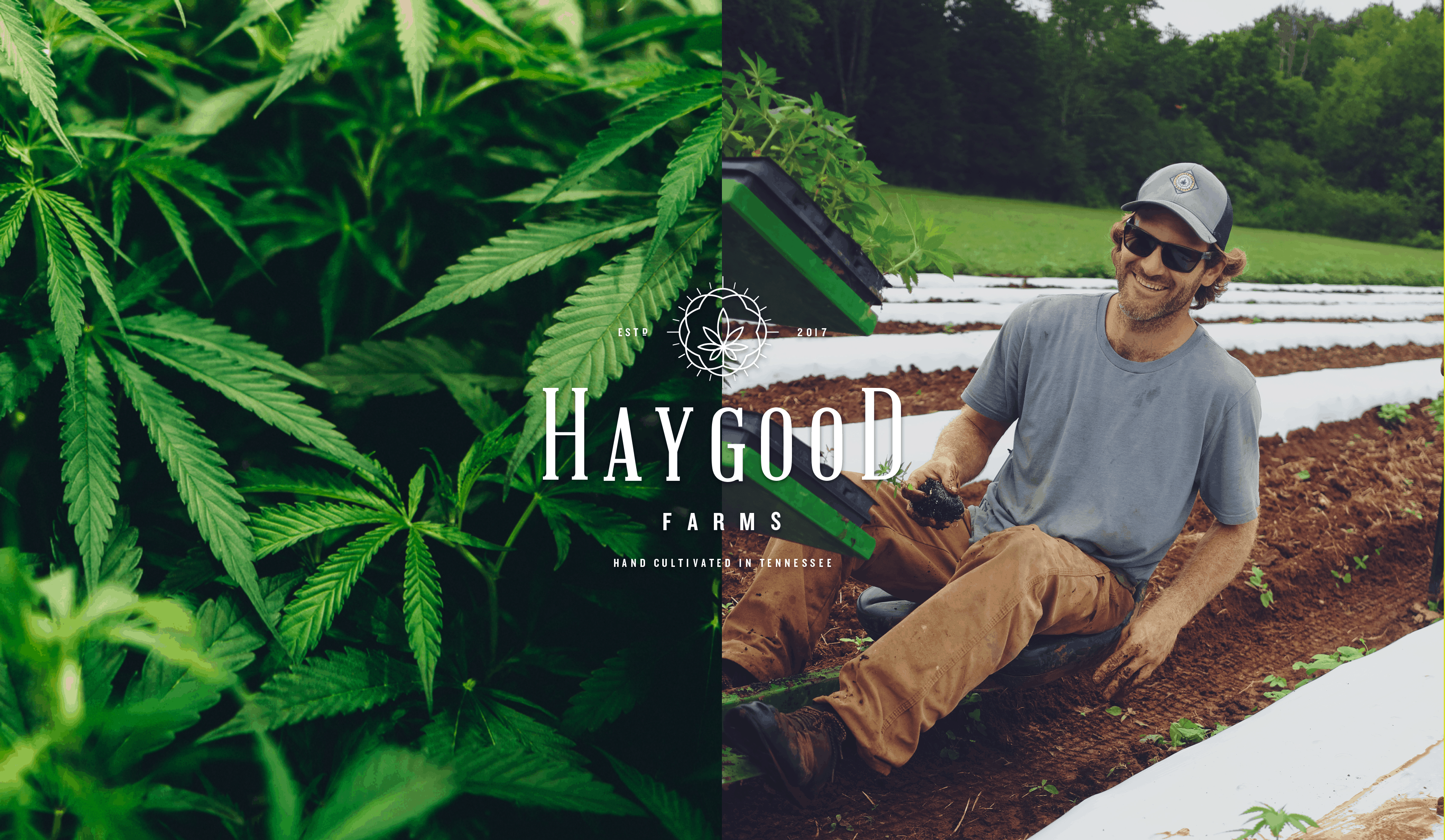 Haygood Farms